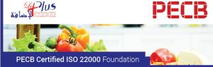 22000-FOUNDATION